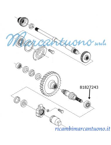 Cuscinetto trasmissione New Holland  cod 81827243